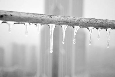 后湖一居民楼楼顶平台铁栏杆上结满冰凌 记者杨涛 摄